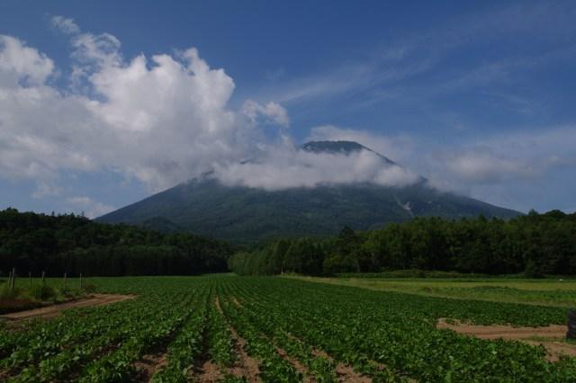 2010年8月3日羊蹄山.jpg